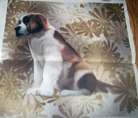 Rsaint_bernard_puppy1__floral_comment_341256_preview