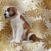 Rsaint_bernard_puppy1__floral_shop_thumb