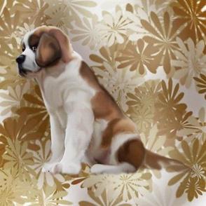 Saint Bernard puppy floral