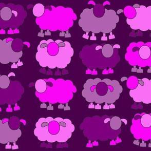 pink sheeps