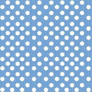 chambray dots-denim