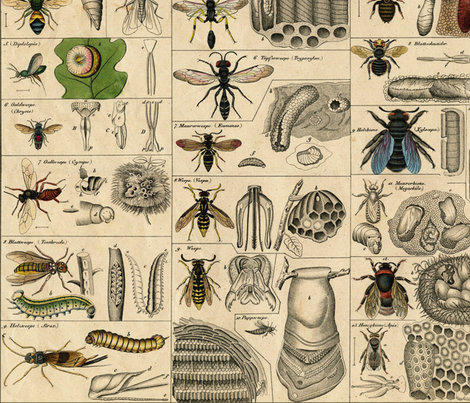 I Am Bugging Out In Historic Proportions! ~ Large fabric by peacoquettedesigns on Spoonflower - custom fabric