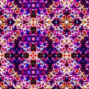 Purple Moroccan fireflies