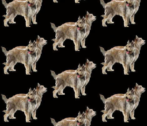 two_berger_picard_dogs fabric by dogdaze_ on Spoonflower - custom fabric