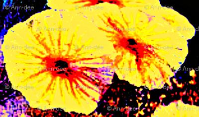 bright yellow flowers mirrored