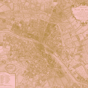 Plan de Paris ~ Paris Map ~ Pink and Gold