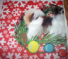 Rpapillon_christmas_comment_341240_thumb