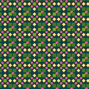 in_a_shoe geometric plaid Anino