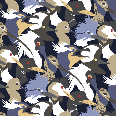 Water Birds