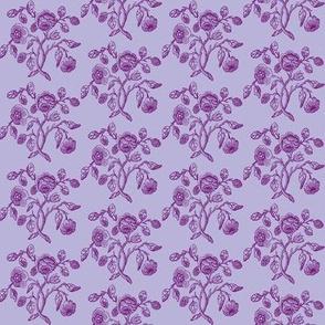Caslon Rose Purple