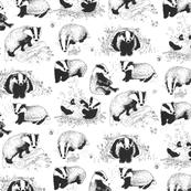 Badgers P...