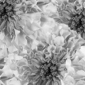 Floral_bigger_bw_copy_shop_thumb