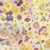 Floral Pansy Collage