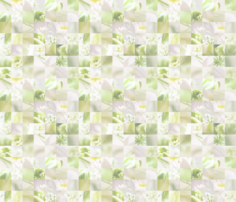 Macro collage fabric by allisoniforbes on Spoonflower - custom fabric