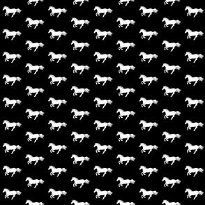 White Pony on Black