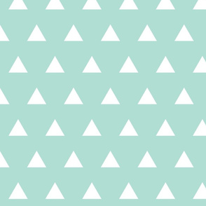 aqua triangles
