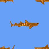 The Life Aquatic Jaguar Shark