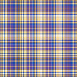 Picnic Plaid tiny