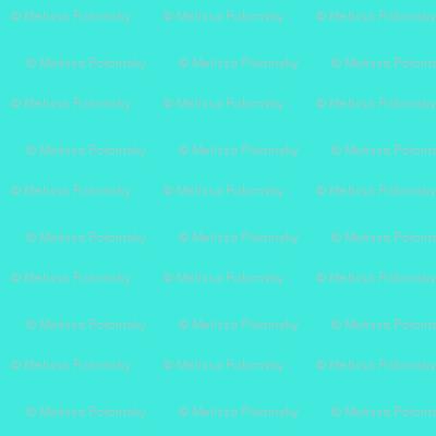 Bright Turquoise // Aqua // Mint Solid