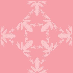 dancing frog lattice pastel pinks