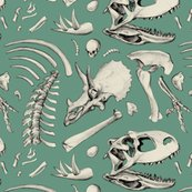 Rrdino_bones_-_sage_shop_thumb