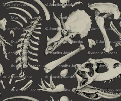 dino bones - dark grey