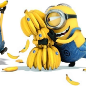 Minions gone bananas