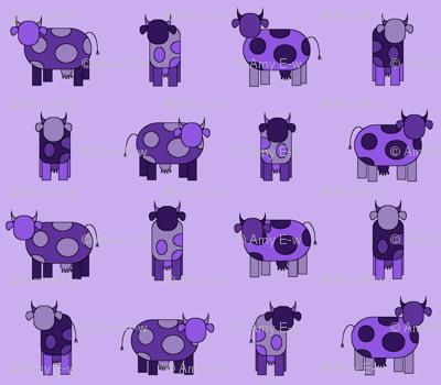light purple cows