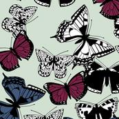 flutter carousel