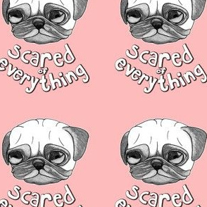 scared of everything