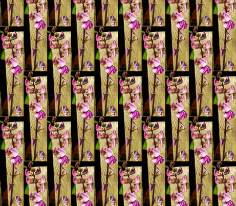 Lablab Bean Blossom in Half Drop Repeat fabric by anniedeb on Spoonflower - custom fabric