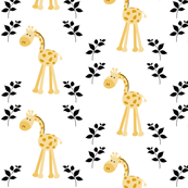 Giraffes in A Row