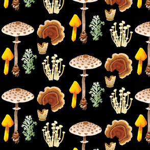 Botanical Illustration- Mushrooms