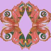 Rrrrrpeach_pink_butterfly_shirt_shop_thumb