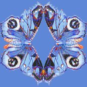 Rrrblue_butterfly_shirt_shop_thumb
