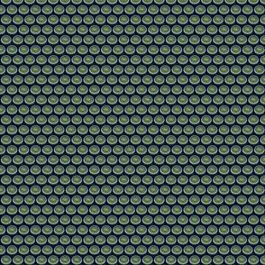diatom8