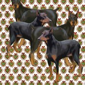 Rrdoberman_shop_thumb