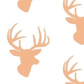 Salmon deer