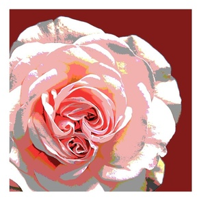16_X_16_pillow_front_rose_1