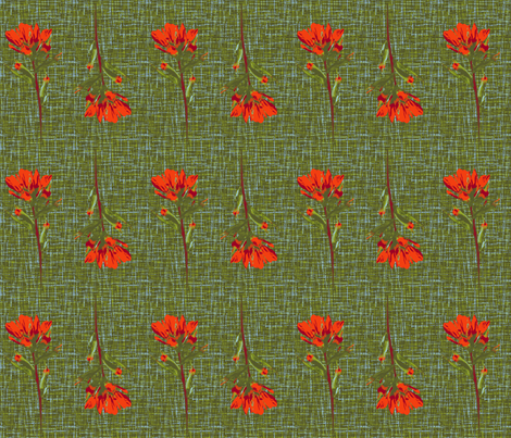 indian paintbrush borders fabric by weavingmajor on Spoonflower - custom fabric