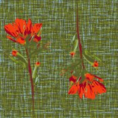 Rindian_paintbrush6c_darkred_shop_thumb
