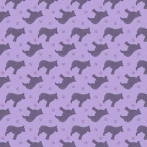 Standing Schipperke - purple
