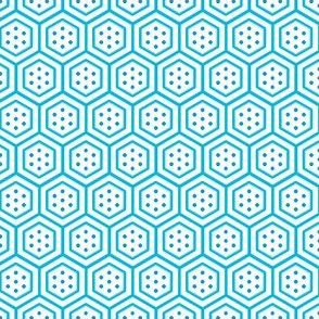 Hexagons with Dots   -aqua