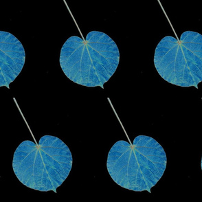 Blue Leaf Special