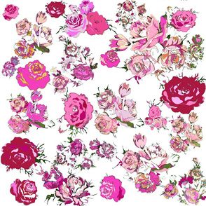 Vintage Floral with Hot Pink & Magenta // White
