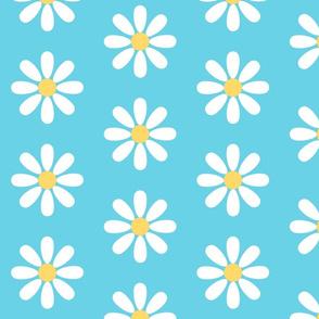 Pop Daisy