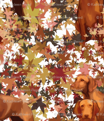Vizslas and Autumn Leaves
