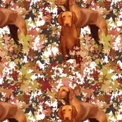 Rrrrvizsla_and_autumn_leaves_shop_thumb