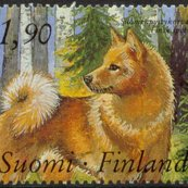 Rfinnish_spitz_postage_stamp_shop_thumb