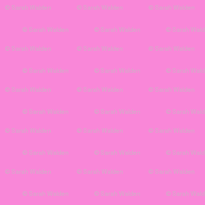 Demoiselle ~ Pink Solid ~ Peacoquette Designs Official Palette